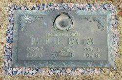 David Lee Cox