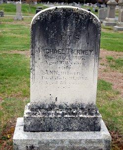 Ann <i>McIntire</i> Tierney