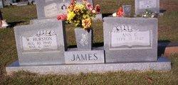 Ann C. James