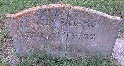 Bailey Adams