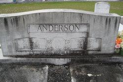 Virginia <i>Lewis</i> Anderson