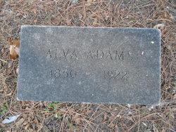 Alva Adams