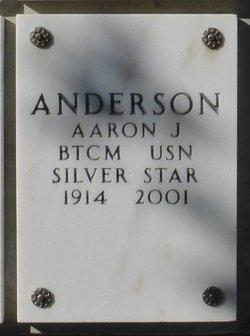 Aaron J Anderson