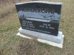 Dellray Hemmerling
