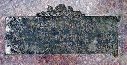 Enid Mural <i>Chenoweth</i> Baldwin