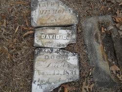 David C Doom