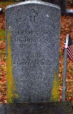 James W Robinson