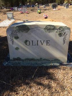 Ada <i>Wildsmith</i> Olive