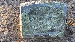 Bertha Elizabeth Bessie <i>Stein</i> Hill