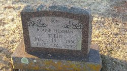 Roger Herman Stein