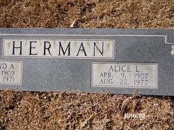 Alice L Herman