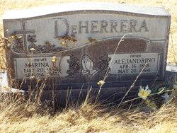 Alejandrino De Herrera