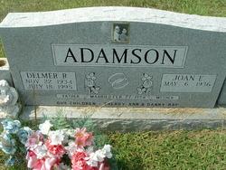 Delmer Ray Adamson