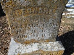 Leonora Amanda Nora <i>Alfrey</i> Shackelford