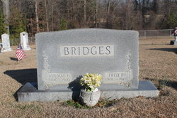 Fred Plato Bridges
