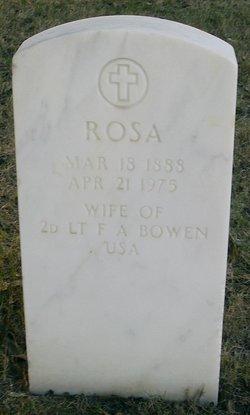 Rosa <i>Schneider</i> Bowen