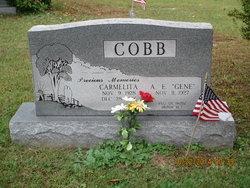 Carmelita <i>Lane</i> Cobb