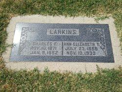 Charles F Larkin