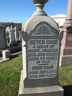 Mary <i>Levy</i> Cohn