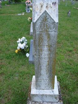 Dr Alfred Franklin Austin