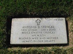 Antonia D Stengel