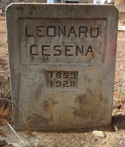 Leonard Cesena