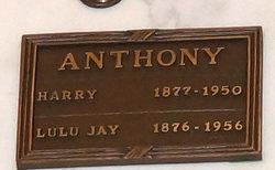 Lulu J <i>Jay</i> Anthony