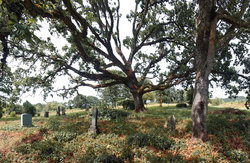 Lafayette Pioneer Cemetery