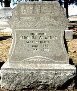 Carolina H Arnett