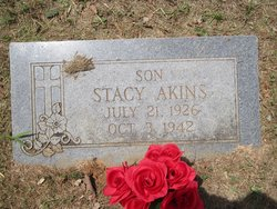 Stacy Akins