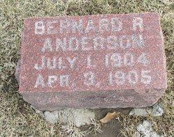 Bernard R Anderson