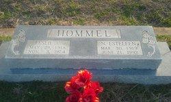 N Esteleen <i>Robertson</i> Hommel