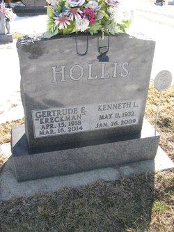 Kenneth L Hollis