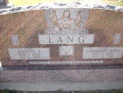Anthony J. Lang