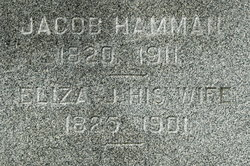 Eliza Jane <i>James</i> Hamman