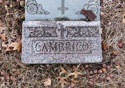 Guiseppina Josephine <i>Vallevieni</i> Cambrico