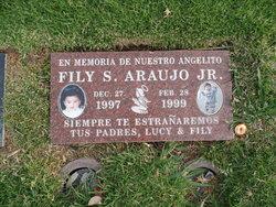 Fily S. Araujo