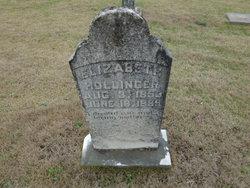 Elizabeth <i>Lomax</i> Hollinger