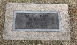 Jacob Harp Burtner