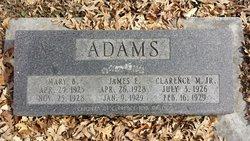 Mary Burgin Adams