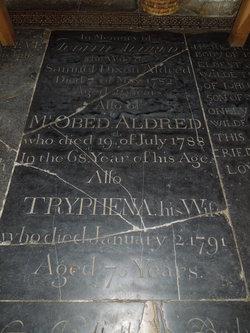 Tryphoena <i>Dixon</i> Aldred