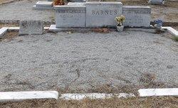 Martha Elizabeth <i>Finch</i> Barnes
