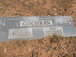 Anthony Cochran
