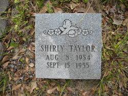 Shirley M Taylor