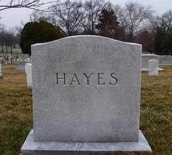 Anne E Hayes