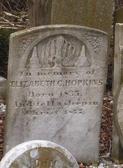 Elizabeth C Hopkins