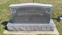Sarah L Carrel