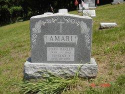 Joan <i>Hanley</i> Amari