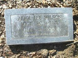 Alice Lee <i>Baldwin</i> Wilson