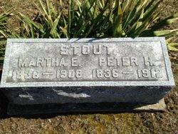 Peter H Stout